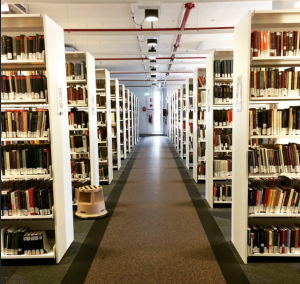 A picture of books in a library