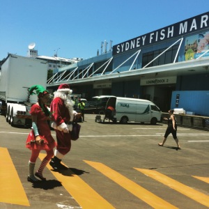 santa at the fish markets